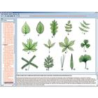Botany in the Classroom, Interactive CD-ROM, 1004294 [W13525], Biyoloji yazilimi